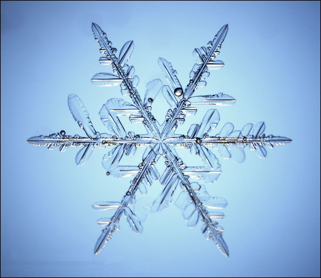 http://www.partow.net/images/snowflakes/images/snow_flake_3.jpg